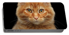 Close-up Portrait Of Ginger Kitty On Black Portable Battery Charger