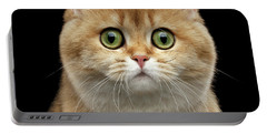 Close-up Portrait Of Golden British Cat With Green Eyes Portable Battery Charger