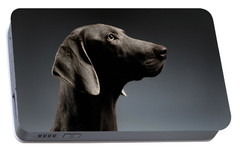 Close-up Portrait Weimaraner Dog In Profile View On White Gradient Portable Battery Charger by Sergey Taran