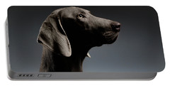 Close-up Portrait Weimaraner Dog In Profile View On White Gradient Portable Battery Charger