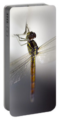 Close Up Shoot Of A Anisoptera Dragonfly Portable Battery Charger