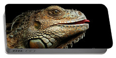 Close-upgreen Iguana Isolated On Black Background Portable Battery Charger by Sergey Taran