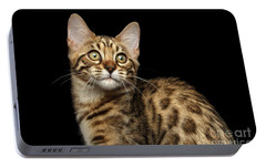 Closeup Bengal Kitty On Isolated Black Background Portable Battery Charger by Sergey Taran