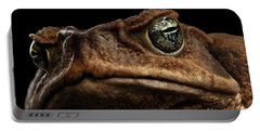 Closeup Cane Toad - Bufo Marinus, Giant Neotropical Or Marine Toad Isolated On Black Background Portable Battery Charger