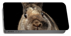 Closeup Funny Little Rabbit, Brown Fur, Isolated On Black Backgr Portable Battery Charger