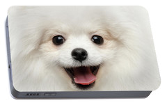 Closeup Furry Happiness White Pomeranian Spitz Dog Curious Smiling Portable Battery Charger by Sergey Taran