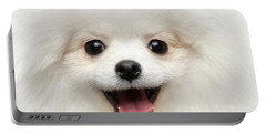 Closeup Furry Happiness White Pomeranian Spitz Dog Curious Smiling Portable Battery Charger