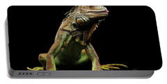 Closeup Green Iguana Isolated On Black Background Portable Battery Charger by Sergey Taran