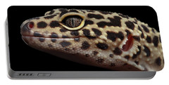 Closeup Head Of Leopard Gecko Eublepharis Macularius Isolated On Black Background Portable Battery Charger by Sergey Taran