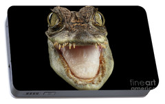 Closeup Head Of Young Cayman Crocodile , Reptile With Opened Mouth Isolated On Black Background, Fro Portable Battery Charger by Sergey Taran