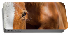 Closeup Horse Eye With Copy Space Portable Battery Charger