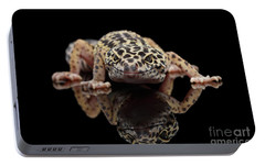 Closeup Leopard Gecko Eublepharis Macularius Isolated On Black Background, Front View Portable Battery Charger by Sergey Taran