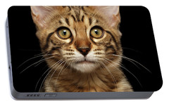 Closeup Portrait Of Bengal Kitty Isolated Black Background Portable Battery Charger by Sergey Taran