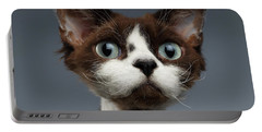 Closeup Portrait Of Devon-rex Looking In Camera On Gray  Portable Battery Charger
