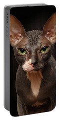 Closeup Portrait Of Grumpy Sphynx Cat Front View On Black  Portable Battery Charger by Sergey Taran