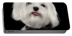 Closeup Portrait Of Happy White Maltese Dog With Bow Looking In Camera Isolated On Black Background Portable Battery Charger by Sergey Taran