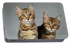 Closeup Portrait Of Two Bengal Kitten On White Background Portable Battery Charger by Sergey Taran