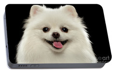 Closeup Portrait Of  White Spitz Dog On Black  Portable Battery Charger by Sergey Taran