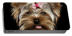 Closeup Portrait Of Yorkshire Terrier Dog On Black Background Portable Battery Charger by Sergey Taran