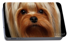 Closeup Portrait Yorkshire Terrier Dog On Black Portable Battery Charger by Sergey Taran
