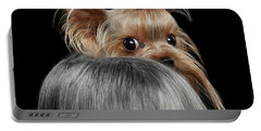 Closeup Yorkshire Terrier Dog, Long Groomed Hair Pity Looking Back Portable Battery Charger