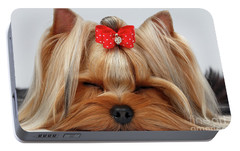 Closeup Yorkshire Terrier Dog With Closed Eyes Lying On White  Portable Battery Charger by Sergey Taran