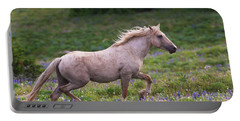 Cloud- Wild Stallion Of The West Portable Battery Charger