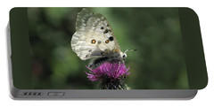 Clouded Apollo Butterfly Portable Battery Charger by Jacqi Elmslie