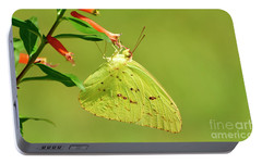 Portable Battery Charger featuring the photograph Clouded Sulphur Butterfly Macro by Kathy Baccari