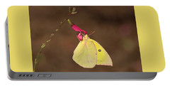 Clouded Sulphur Butterfly On Pink Wildflower Portable Battery Charger
