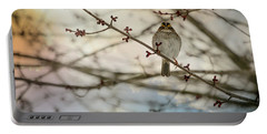 Portable Battery Charger featuring the photograph Cloudy Finch by Trish Tritz