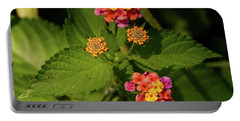 Cluster Of Lantana Flowers Portable Battery Charger