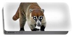 Coatimundi Portable Battery Charger