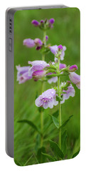 Cobea After Rain Portable Battery Charger