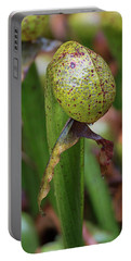 Cobra Lily Portable Battery Charger