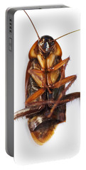 Cockroach Carcass Portable Battery Charger