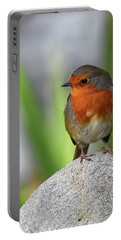 Cocky Robin Portable Battery Charger
