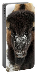 Cold Bison Stare Portable Battery Charger