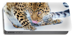 Cold Leopard In Snow Portable Battery Charger by Steve McKinzie