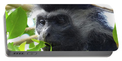 Colobus Monkey Eating Leaves In A Tree Close Up Portable Battery Charger