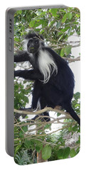 Colobus Monkey Eating Leaves In A Tree Portable Battery Charger