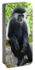 Colobus Monkey Sitting In A Tree 2 Portable Battery Charger