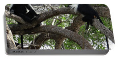 Colobus Monkeys Sitting In A Tree Portable Battery Charger