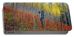 Color Fall Portable Battery Charger