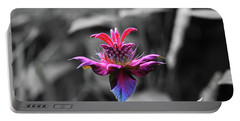 Color Flower Art Portable Battery Charger by David Stasiak