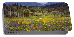 Color Of Spring Portable Battery Charger by Leland D Howard
