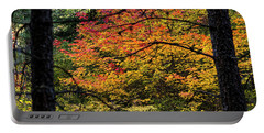 Cascade Mountain Range Fall Color Portable Battery Charger