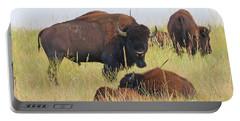 Colorado Buffalo 0096 Portable Battery Charger