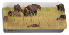 Colorado Buffalo  0097 Portable Battery Charger