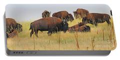 Colorado Buffalo  0099 Portable Battery Charger